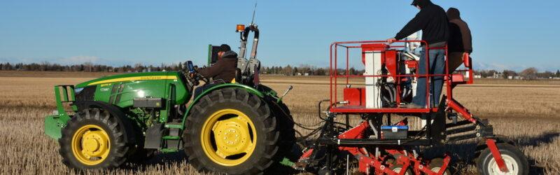 ultra early seeding wheat